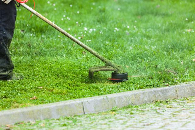 愛知県の草刈り代行